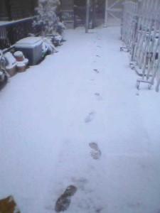 まっさらな雪の上につける自分の足跡