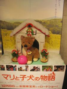 マリと子犬の物語/ボップもお正月飾りでお出迎え
