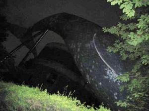 深夜へもぐる鯨