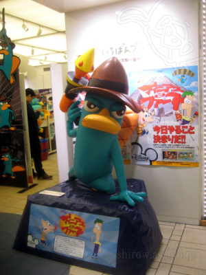 Agent P from Phineas and Ferb /Event shop at Tokyo station