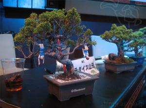マン盆栽/フチ子(手前)と日本のいきもの