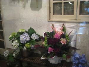 青林工藝社からの紫陽花