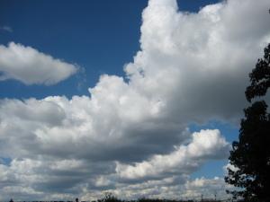 多摩区の青空