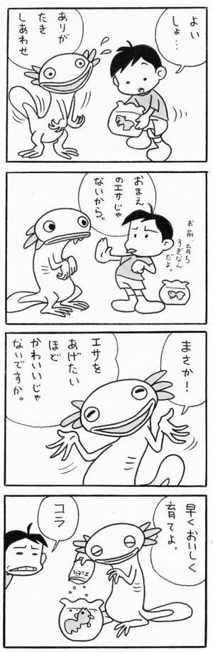 アホロートルのウパ蔵(1)